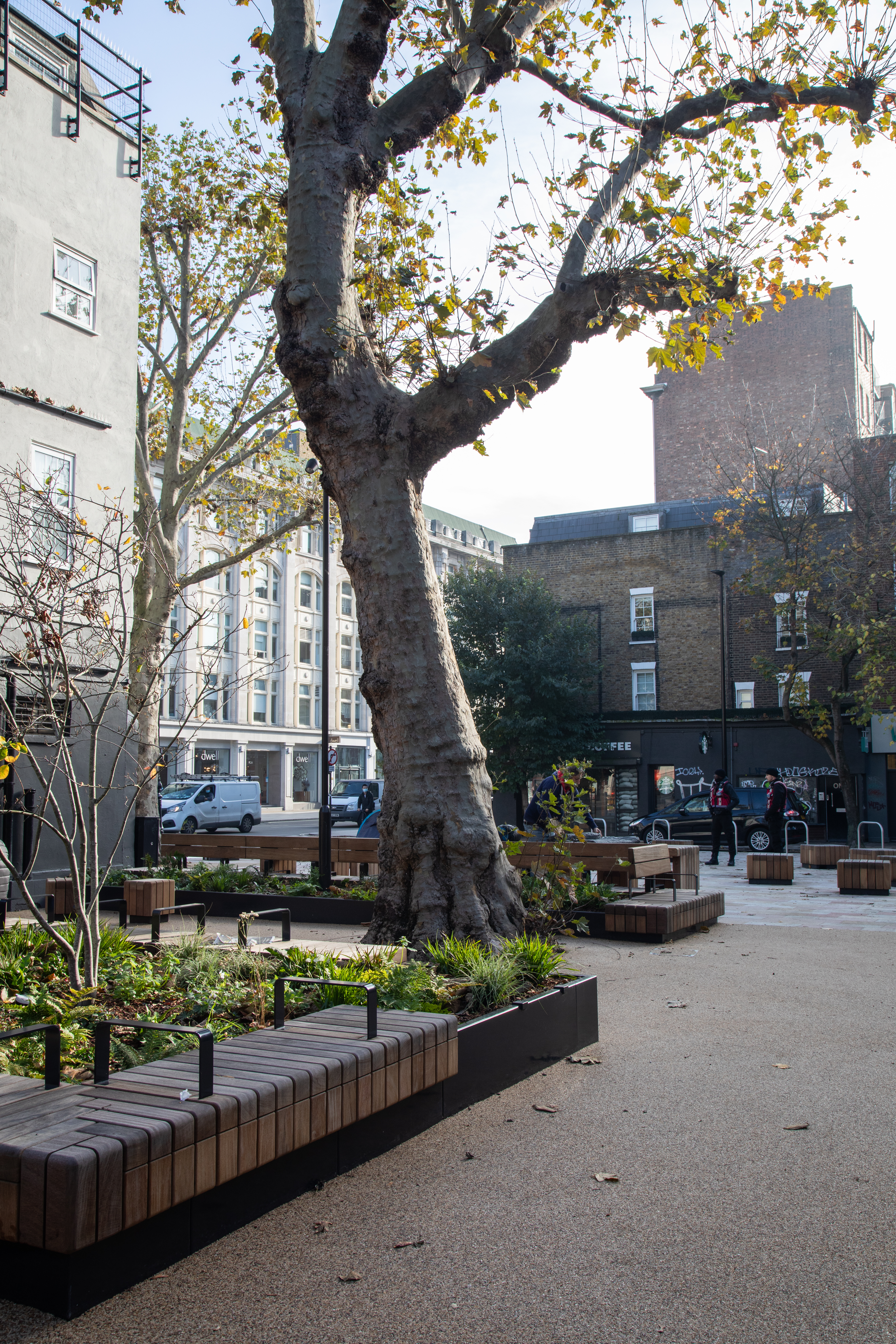 View of Whitfield Gardens after restoration showing new planting